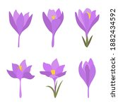 Set Of 6 Spring Flowers. Purple ...