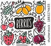 hand drawn berries fruit doodle ... | Shutterstock .eps vector #1883274655