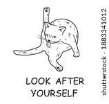 illustration of a licking cat....   Shutterstock .eps vector #1883341012