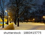 Landscape With Street Lamps In...
