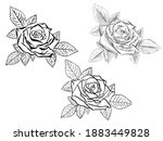 vector eps file of a blooming... | Shutterstock .eps vector #1883449828