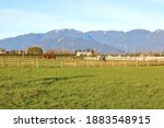 Wide View Of Grassland And A...