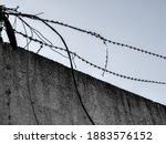 Barbed Wire Close Up Against A...