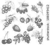vector set of hand drawn...   Shutterstock .eps vector #188395412