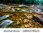 Summer Along The Williams River ...