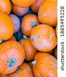 Orange Pumpkins In A Wooden Box ...