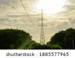 Electricity Pole With...