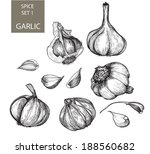 garlic | Shutterstock . vector #188560682