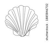 black and white seashell...   Shutterstock . vector #1885846732