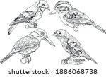 beautiful birds line art design ... | Shutterstock .eps vector #1886068738