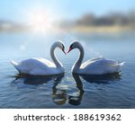 Romantic Two Swans   Symbol Of...