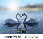 romantic two swans   symbol of... | Shutterstock . vector #188619362