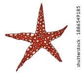 vector cartoon red starfish...   Shutterstock .eps vector #1886549185