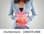 Illustration of internal organs ...