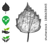 vector wire frame birch leaf....   Shutterstock .eps vector #1886658445