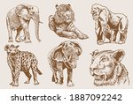 graphical sepia set of wild... | Shutterstock .eps vector #1887092242
