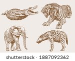 graphical sepia set of wild... | Shutterstock .eps vector #1887092362