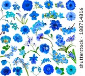 Collection Set Of Blue Flowers...