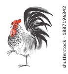 Rooster Line Hand Drawn Vector...