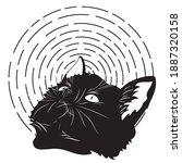 portrait of cute black kitten... | Shutterstock .eps vector #1887320158