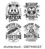 baseball  basketball team t... | Shutterstock .eps vector #1887448165