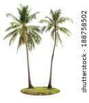 coconut palm tree isolated on... | Shutterstock . vector #188758502