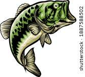 natural green bass fish in...   Shutterstock .eps vector #1887588502