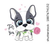 cute little dog with flower....   Shutterstock .eps vector #1887674152
