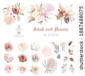 trendy dried palm leaves  blush ... | Shutterstock .eps vector #1887688075