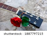 Acoustic Guitar Headstock...