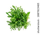 Small photo of Arugula in wood bowl isolated. Fresh arugula, ruccola leaves, rucola, eruca or garden roquette salad top view