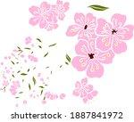 branch of cherry blossom on... | Shutterstock .eps vector #1887841972