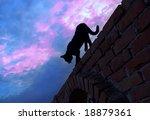Black Cat Silhouette Walking...