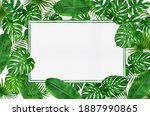 Frame of tropical leaves...