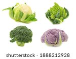 Romanesco Broccoli  Fresh...