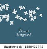 vector illustration of white... | Shutterstock .eps vector #1888431742