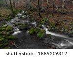 Waterfall On Bucaci Creek In...