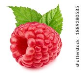 One Raspberries Isolated On...
