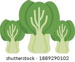 natural vegetable cabbage... | Shutterstock .eps vector #1889290102