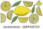 set of lemon fruits hand drawn  ... | Shutterstock .eps vector #1889420725