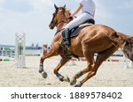 Red Sports Horse Moving At A...