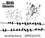 Set Of Birds Silhouettes  ...
