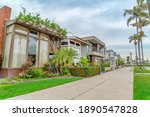 Houses And Palm Tree Lined...