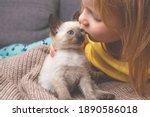 Child Kisses A Siamese Kitten....