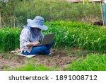 thai farmer is using a laptop...   Shutterstock . vector #1891008712