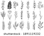 collection forest fern... | Shutterstock .eps vector #1891119232