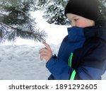 Child's Hand Touches Pine...