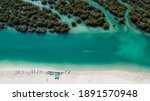 White sand beach on a sunny winter day lined with kayaks on one side and mangrove forests on another.