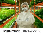 Serious Greenhouse Worker In...