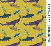 Various Type Of Sharks  Hammer...